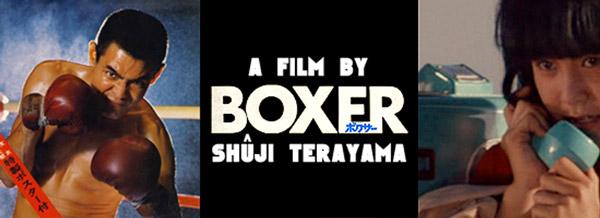 boxer-banner