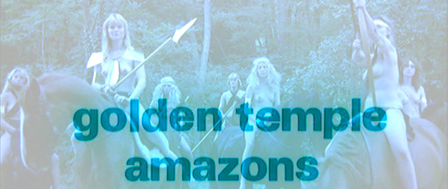 Golden Temple Amazons Banner