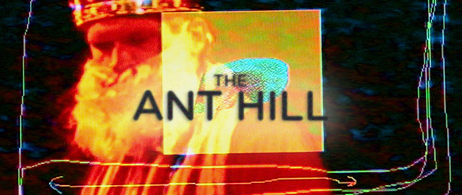 anthill-banner