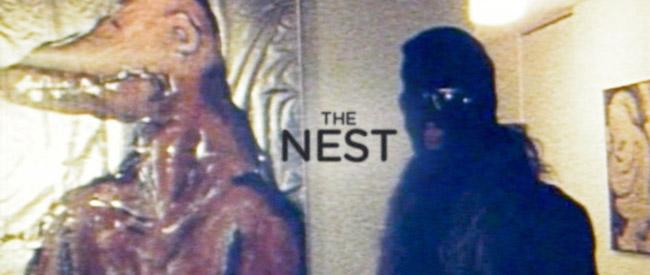 nest-banner