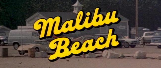 malibu_beach_header