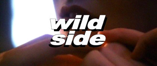 WildSideBanner (1)